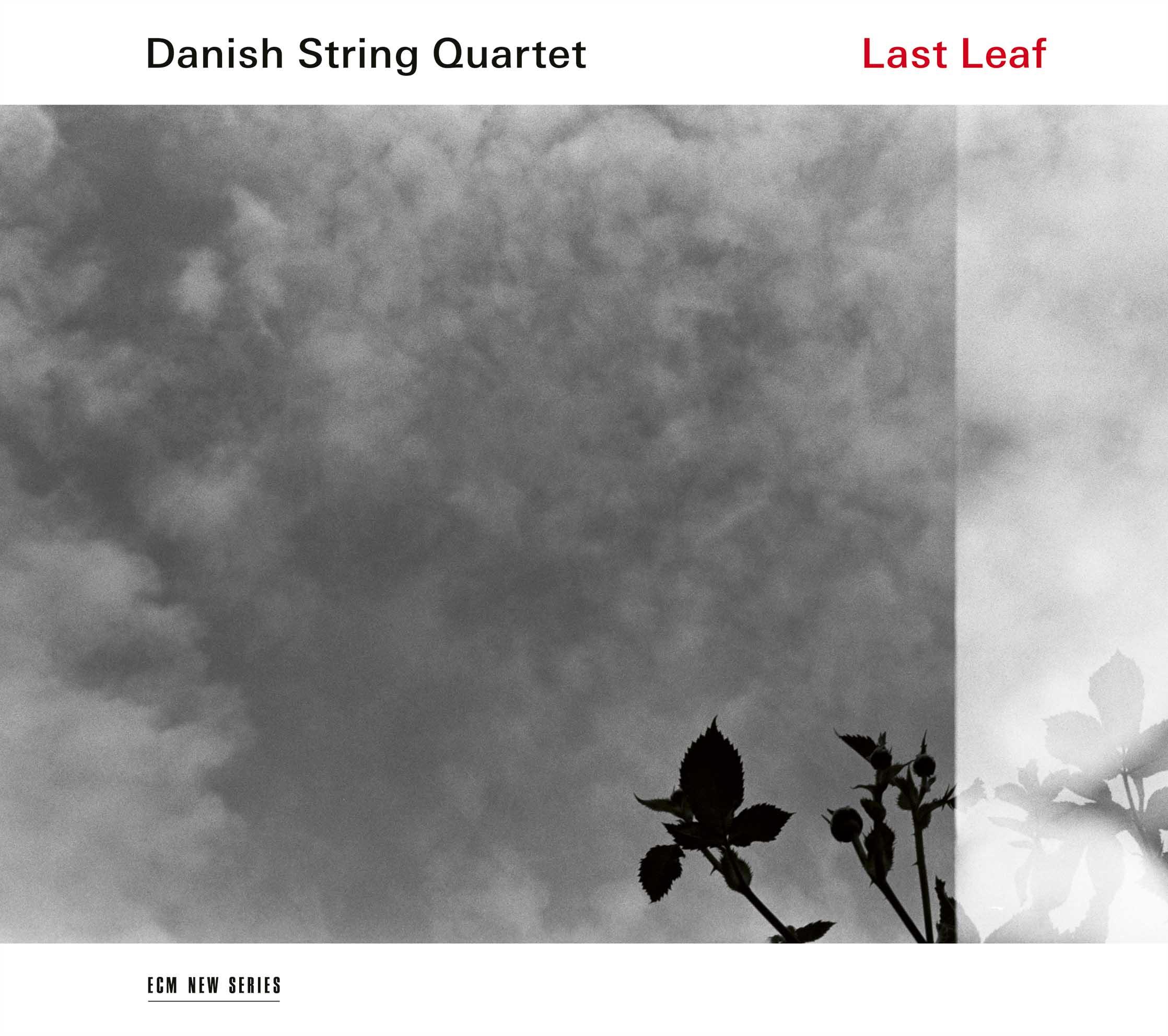 DANISH STRING QUARTET «Last Leaf»