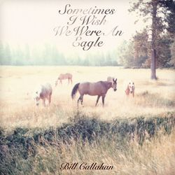 BILL CALLAHAN, « Sometimes I wish we were an eagle »