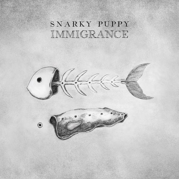 pochette de l'album Immigrance des Snarky Puppy, représentant en deux parties : les arêtes et la peau.