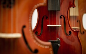 violon gros plan